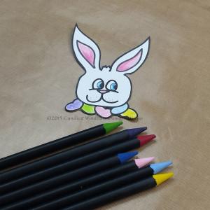 3 Kool Tak Bunny Bag color bunny CWindham